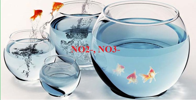 Xử lý nước nhiễm Nitrat Nitrit Amoniac